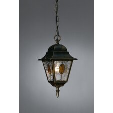 Munchen 1 Light Hanging Lantern