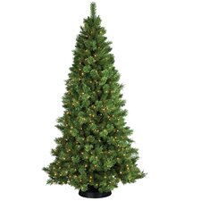 7.5' Sheridan Pine Christmas Tree with 400 Clear Lights