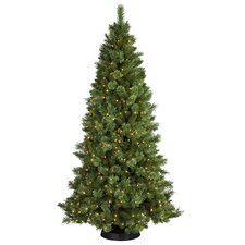 7' Sheridan Pine Christmas Tree with 350 Clear Lights