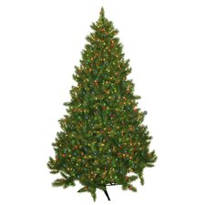 7.5' Evergreen Fir Artificial Christmas Tree with 700 Multicolored Lights