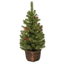 4' Vernon Entryway Green Artificial Christmas Tree with 50 Clear Lights