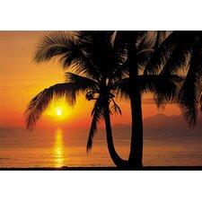 Palmenstrand Sonnenaufgang Wandgrafik