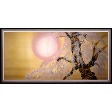 Sakura Blossoms Framed Painting Print