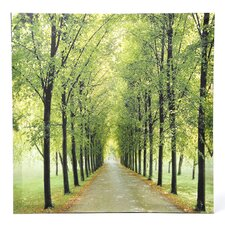 Path of Life Photographic Print on Wrapped Canvas