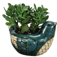 Nature's Garden Novelty Pot Planter