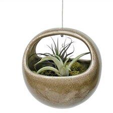 Nature's Garden Round Pot Planter