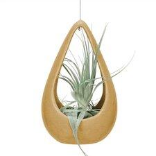 Nature's Garden Novelt Pot Planter