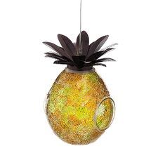 Welcome Pineapple Bird Feeder