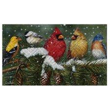 Backyard Birds On Snowy Branch Embossed Floor Mat