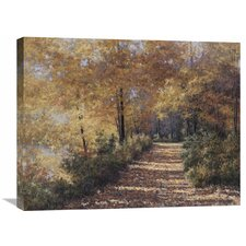 'Natures Colors' by Diane Romanello Painting Print on Wrapped Canvas