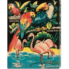 'Tropical Hobbyland - Birds' by Retro Travel Graphic Art on Wrapped Canvas