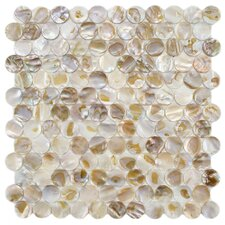 "Shore 1"" x 1"" Seashell Mosaic Tile in Natural"