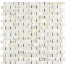 "Shore 0.56"" x 0.88"" Seashell Mosaic Wall Tile in White"