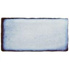 """Antiqua 3"""" x 6"""" Ceramic Tile in Special Via Lactea"""