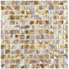 "Shore 0.75"" x 0.75"" Square Seashell Mosaic Tile in Natural"