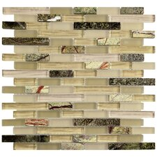 "Sierra 11.75"" x 12"" Glass and Natural Stone Mosaic Tile in Rainforest"