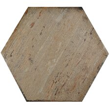 """Rama 14.13"""" x 16.25"""" Hex Porcelain Floor and Wall Tile in Brown"""
