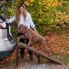 """Free Standing Extra Wide Carpeted 55"""" Pet Ramp"""