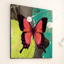 Metamorphosis Modern Butterfly Framed Graphic Art