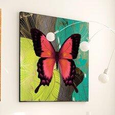 Metamorphosis Modern Butterfly #4 Framed Graphic Art