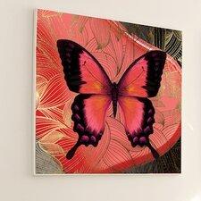 Metamorphosis 2 Piece Butterfly #2 Framed Graphic Art
