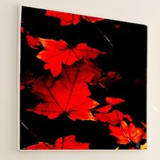 Nature Autumn Framed Graphic Art