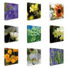 Photographic Flowers 9 pc Photographic Print Wrapped Canvas Set