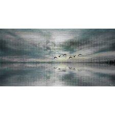 Birds Skylight Art Print on Brushed Aluminum