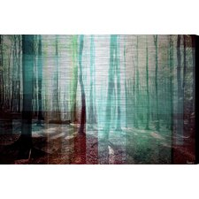Tree Rays - Art Print on Brushed Aluminum