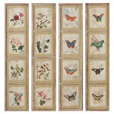 Papillon Wall Decor Framed Graphic Art (Set of 4)