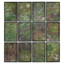 Timber Wall Décor Framed Graphic Art (Set of 12)