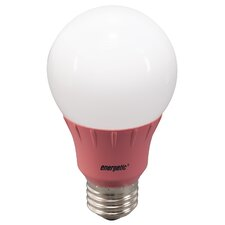 Pink Party Light Bulb