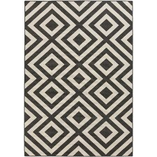 Evans Trellis Smoke Outdoor Area Rug