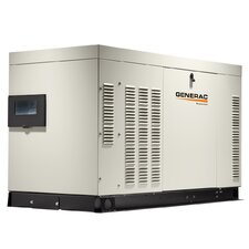Protector 48 Kw Liquid-Cooled Dual Fuel Standby Generator with Catalyst in Aluminum Enclosure