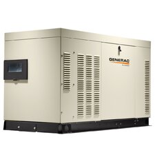 Protector 60 Kw Liquid-Cooled Natural Gas Standby Generator with Natural Gas in Steel Enclosure