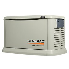 22 Kw Air-Cooled Dual Fuel Standby Generator in Aluminum Enclosure