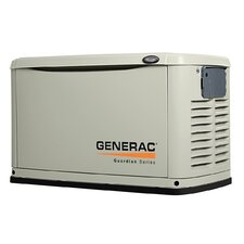16 Kw Air-Cooled Dual Fuel Standby Generator in Aluminum Enclosure