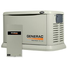 20 Kw Air-Cooled 200 Amp Dual Fuel Standby Generator in Steel Enclosure
