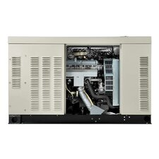 Protector 25 Kw Liquid-Cooled Dual Fuel Standby Generator in Steel Enclosure