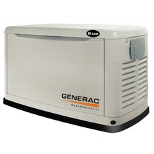 Guardian 8 Kw Dual Fuel Standby Generator in Steel Enclosure