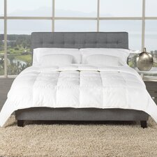 Premium Hutterite Goose Down Comforter