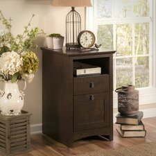 Buena Vista 2 Drawer Vertical File