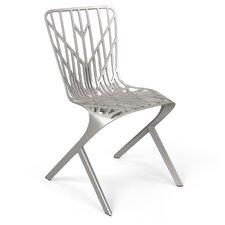 David Adjaye 2013 Washington Skeleton Side Chair