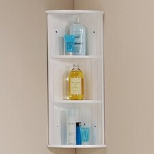 Thomson 25 x 50cm Bathroom Shelf