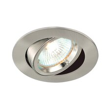 Cast Tilt Downlight
