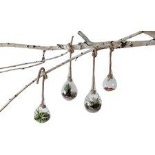 Terrain Glass Single Hanging Vase