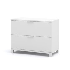 Pro-Linea 2-Drawer Lateral File