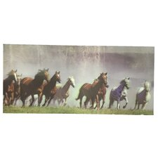 '3D Paint with Many Different Kinds of Horses' Graphic Art on Canvas