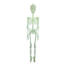 Decorative Glow in the Dark Skelton