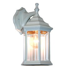 Waterdown 1 Light Outdoor Wall Lantern